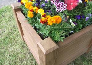 Planters as Horticultural Therapy